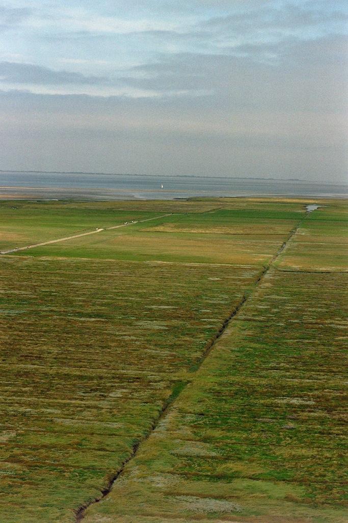 weites-land-analog-fotografiert